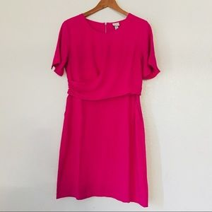 A New Day Pink Dress